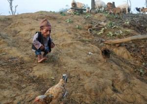 Чандра Данги из непальской деревни - самый маленький человек на планете.