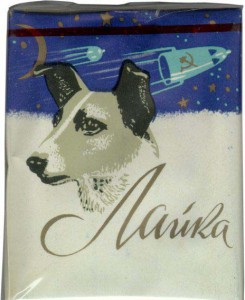 Собаки-космонавты предопределили первый полёт человека в Космос.
