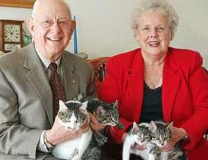 Как живётся сегодня первой клонированной кошке?