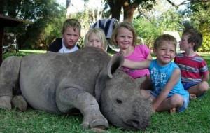 Пенсионерка воспитала домашнего носорога