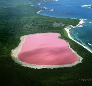 Озеро Хиллер – розовое чудо Австралии
