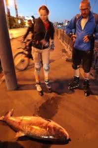 В реке Москве водятся гигантские рыбы-мутанты