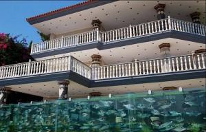 Турецкий бизнесмен построил вокруг своей виллы забор-аквариум.