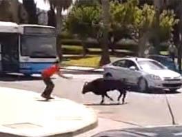 Как простой прохожий справился с быком