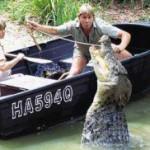 Жизнь и смерть Стива Ирвина — «охотника за крокодилами».