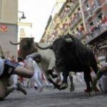 В традиционном забеге с быками в городе Памплона (Испания) пострадало более 50 человек.