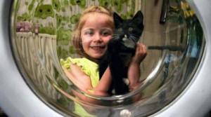 Котёнок остался в живых после стирки в течение часа в стиральной машине.