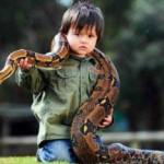 Уникальный ребёнок из Австралии водит дружбу с удавом.