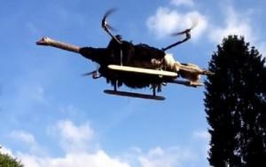 Житель Нидерландов создал модель летающего страуса