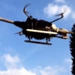 Житель Нидерландов создал модель летающего страуса. + Видео