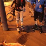В реке Москве водятся гигантские рыбы-мутанты. + Видео