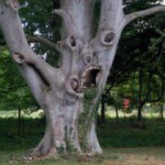 Самое ужасное дерево