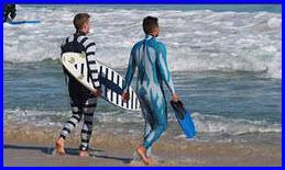 Учёные создали гидрокостюмы для дайверов и сёрфингистов, защищающие от нападения акул.