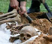 Во время процедуры награждения археологи признались, что древнее славянское захоронение в Германии найдено благодаря барсуку.