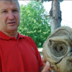 В Хорватии найден инопланетянин, и это подтверждают местные власти