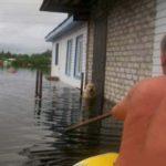 Пёс Дружок даже во время наводнения остался верен родному дому