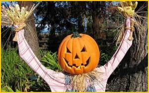 Почему именно совершенно обычный овощ тыква – символ Хэллоуина?