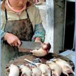 В Китае вместо говядины и баранины сбывают мясо лисиц и крыс.