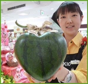Селекционеры Японии прославились на весь мир удивительными сортами арбузов. Фото