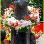 Пёс Хатико – японский символ любви и преданности.