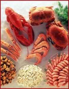 Морепродукты – кладовые здоровья. Лечебные и питательные свойства.