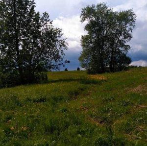 День исчезнувшей, но не забытой деревни Малый Ирым, Удмуртия (часть вторая)